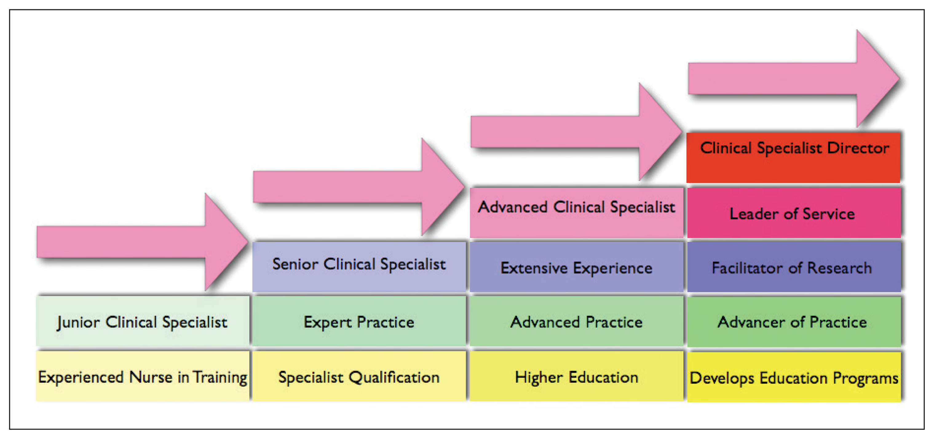 Advancing Nursing Practice: The Emergence of the Role of Advanced