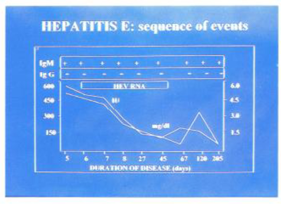 Hepatitis E Virus: Another Addition to the Existing Alphabet of
